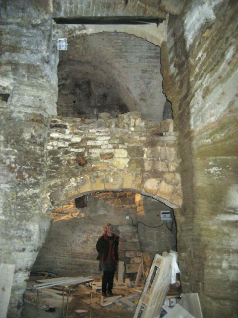 Joanna surveys cave renovation.jpg