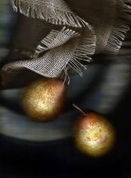 Purus bosc Bosc pears, pewter and hemp